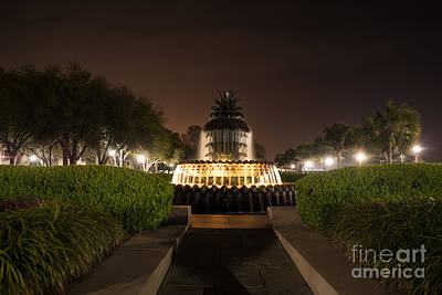Charleston Photograph - Waterfront Park Pineapple by Manda Renee