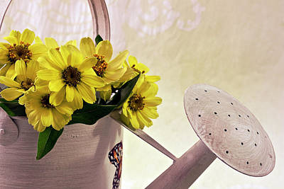 Daisies Photograph - Watering Can Daisies by Sandra Foster