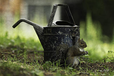 Watering Can Art Print by Everet Regal
