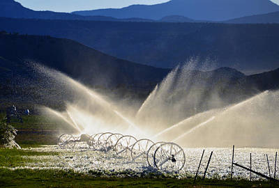 Photograph - Watering The West by David Lee Thompson