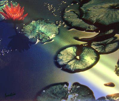 Painting - Waterlilies Ames Pond Deer Isle Maine II by Anastasia Savage Ealy