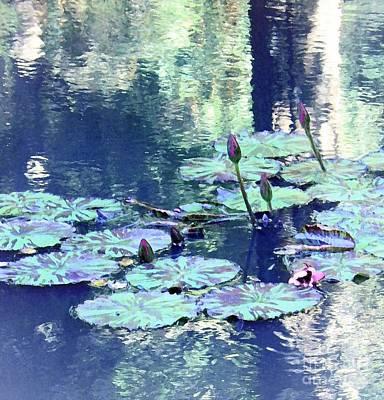 Waterlily Buds Art Print