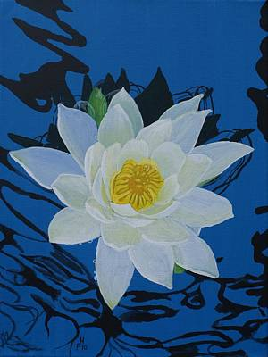 Painting - Waterlily by Frank Hamilton
