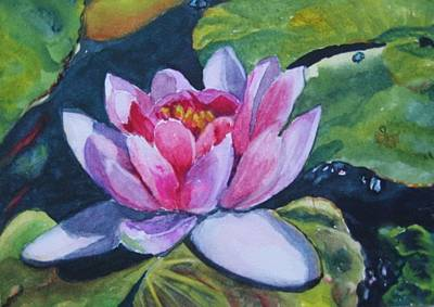 Waterlily II Art Print