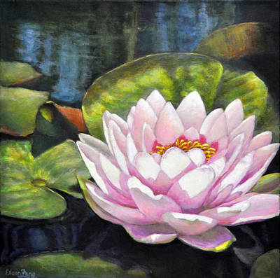 Painting - Waterlily In The Light by Eileen  Fong