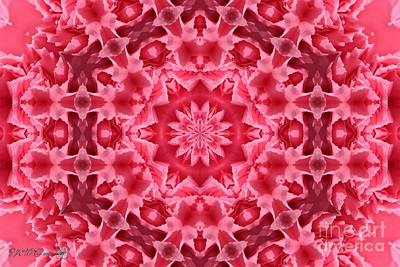 Wine Reflection Art Digital Art - Watermelon Carnation Ruffles Mandala by J McCombie