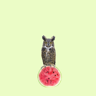 Minimal Wall Art - Photograph - Watermelon by Caterina Theoharidou