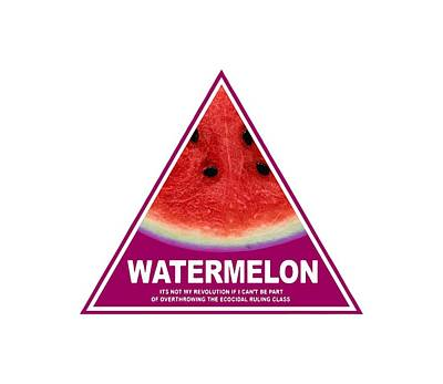 Watermelon Drawing - Watermelon by Shakira H Wetmore