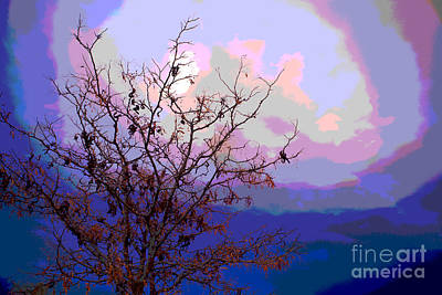 Photograph - Watermelon Sky by Barbara Schultheis