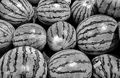 Photograph - Watermelon Stripes by Robert Meyers-Lussier