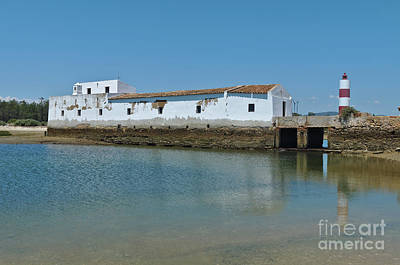 Photograph - Watermill In Ria Formosa Natural Park by Angelo DeVal