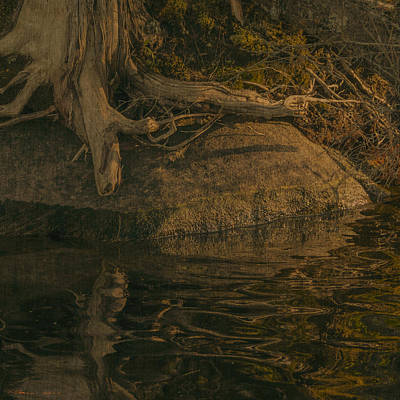 Nature Photograph - Waters Edge Course Weave 22.1 by Peter Garland