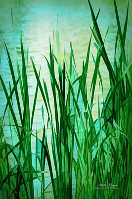 Digital Art - Water's Edge by Mike Braun