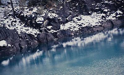 Photograph - Water's Edge by Sophia Pagan