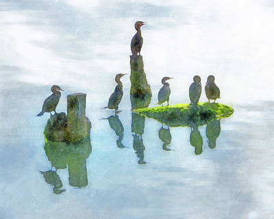 Anhinga Digital Art - Watersky Birds by Francesa Miller