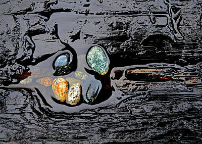 Photograph - Water,stones And Wood by Richard George