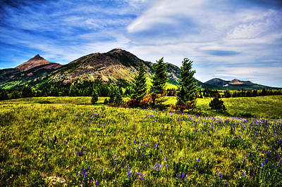 Photograph - Waterton-glacier International Peace Park Bellevue Meadow by Roger Passman