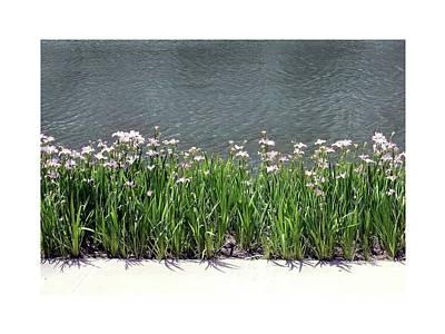Digital Art - Waterway Flowers Border by Ellen Barron O'Reilly