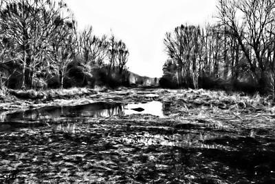 Photograph - Watery Landscape by Gina O'Brien