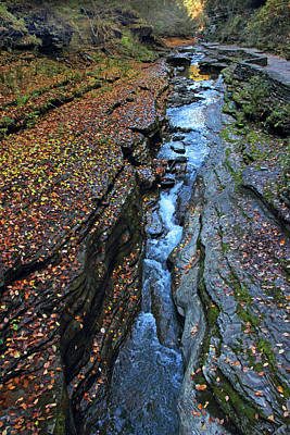 Photograph - Watkins Glen Abstract by Jessica Jenney