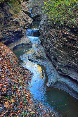 Fallen Leaves Photograph - Watkins Glen Creek by Jessica Jenney