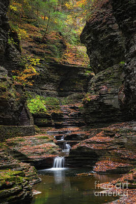 Photo Royalty Free Images - Watkins Glen Gorge  Royalty-Free Image by Michael Ver Sprill