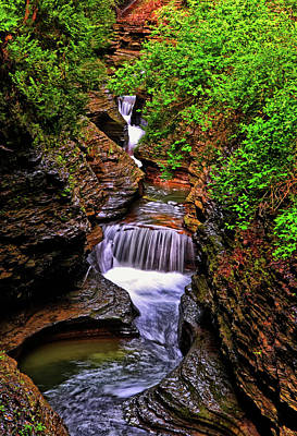 Photograph - Watkins Glen State Park 015 by George Bostian