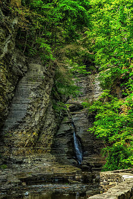 Photograph - watkins glen state park new york_DSC9670 by Greg Kluempers