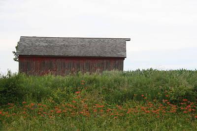 Photograph - Watson Barn by Dylan Punke