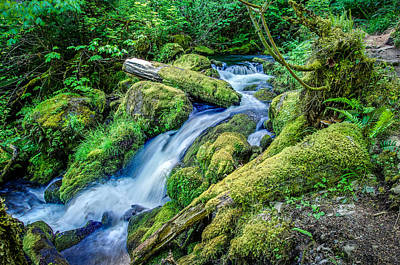 Crater Lake National Park Photograph - Watson Creek Falls Oregon by Scott McGuire