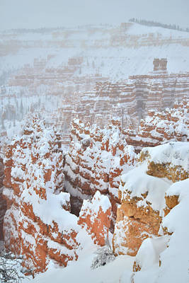 Photograph - Wave Of Hoodoos by Ray Mathis