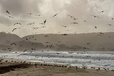 Photograph - Wave Riders by Derek Dean