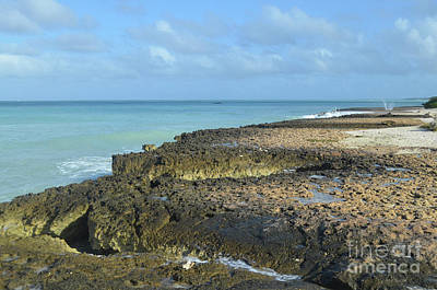 Photograph - Wave Splashed Lava Rock Along The Aruba Coast by DejaVu Designs
