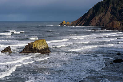 Photograph - Waves At Tillamook Head by Robert Potts