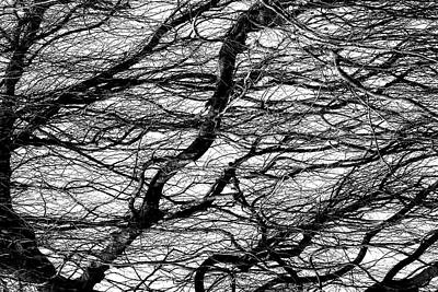Photograph - Waves by Dawn J Benko