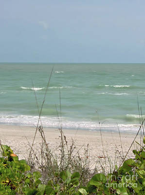 Photograph - Waves In The Gulf by D Hackett