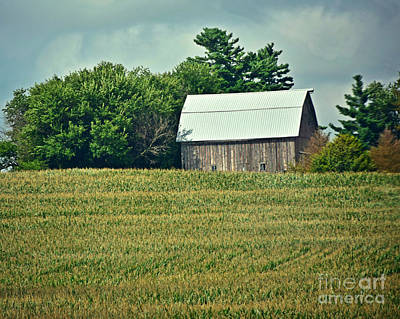 Photograph - Waves Of Corn by Kathy M Krause