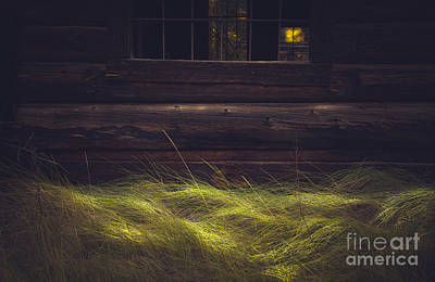 Photograph - Waves Of Grass by The Forests Edge Photography - Diane Sandoval
