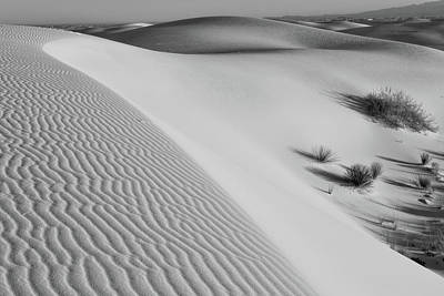 Photograph - Waves Of Sand by Larry Pollock