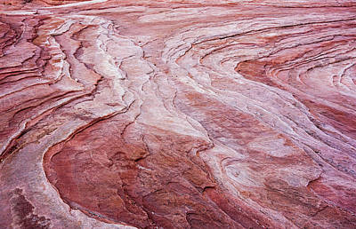 Photograph - Waves Of Sandstone by Loree Johnson