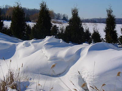 Photograph - Waves Of Snow by Peggy King