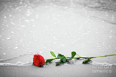 Wash Photograph - Waves Washing Away A Red Rose From The Beach. Color Against Black And White. Love by Michal Bednarek