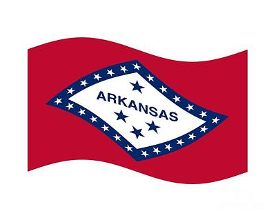 Waving Arkansas Flag Original by Frederick Holiday