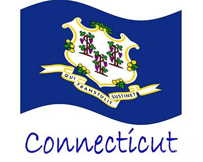 Waving Connecticut Flag And Name Original by Frederick Holiday