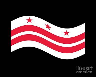 Waving District Of Columbia Flag Original