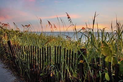 Photograph - Waving In The Breeze by Debra and Dave Vanderlaan