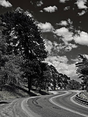 Photograph - Wavy Highway by Ron Dubin