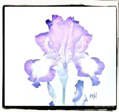 Digital Art - Wavy Purple And White Iris by Marsha Heiken