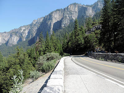 Photograph - Wawona Road by Eric Forster