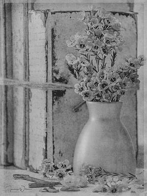 Photograph - Waxflowers And Books In Black And White by Teresa Wilson